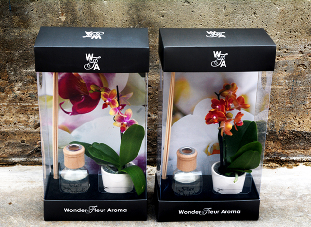 wonder-fleur-reed-diffuser-mini-pure=beauty-orchids-plainview-growers-1-800-flowers