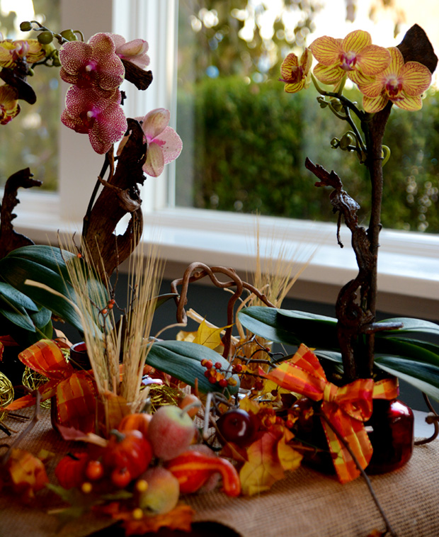 pure-beauty-orchids-fall-arrangement-1-800-flowers