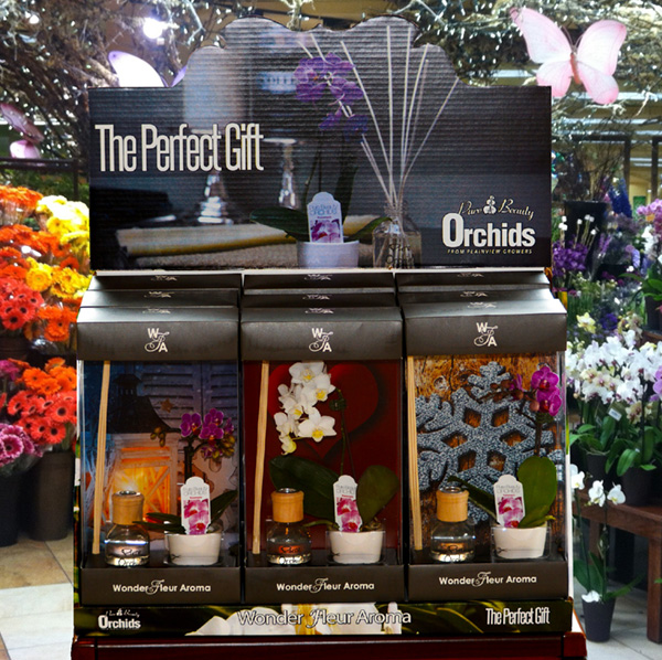 wonder-fluer-store-display-perfect-gift-orchids-1-800-flowers