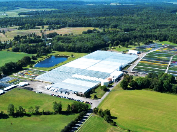 plainview-growers-allamuchy-facility