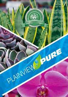 plainview-pure-35-anniversary-greenhouse-growers-allamuchy-new-jersey-catalog